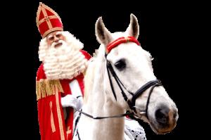 sinterklaas-paard